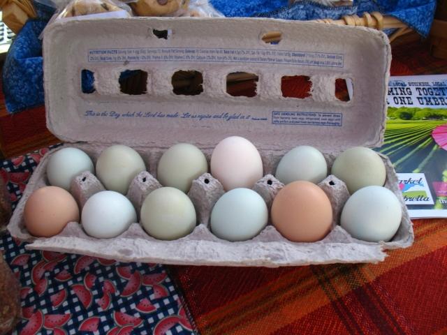 SOJ eggs