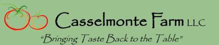 casselmote_logo