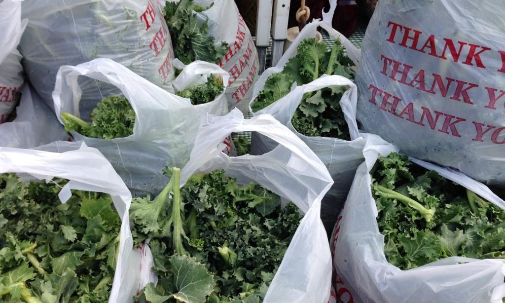 South of the James Market  - Walnut Hill Produce kale