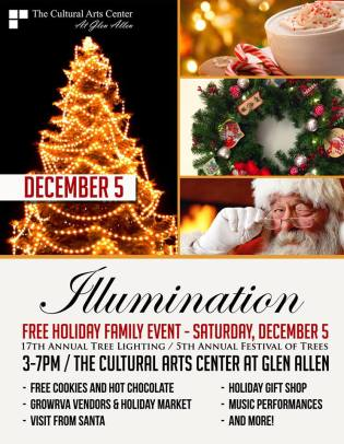 Cultural Arts Center - Tree Illumination 2015