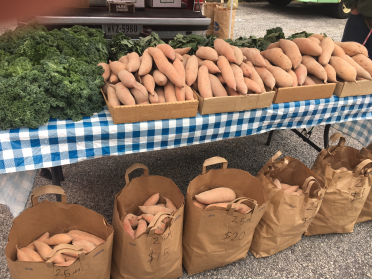 GrowRVA - Jason Talley Sweet Potato Kale